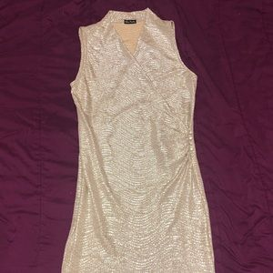 Gold Shimmer Bodycon Dress (From Spain)